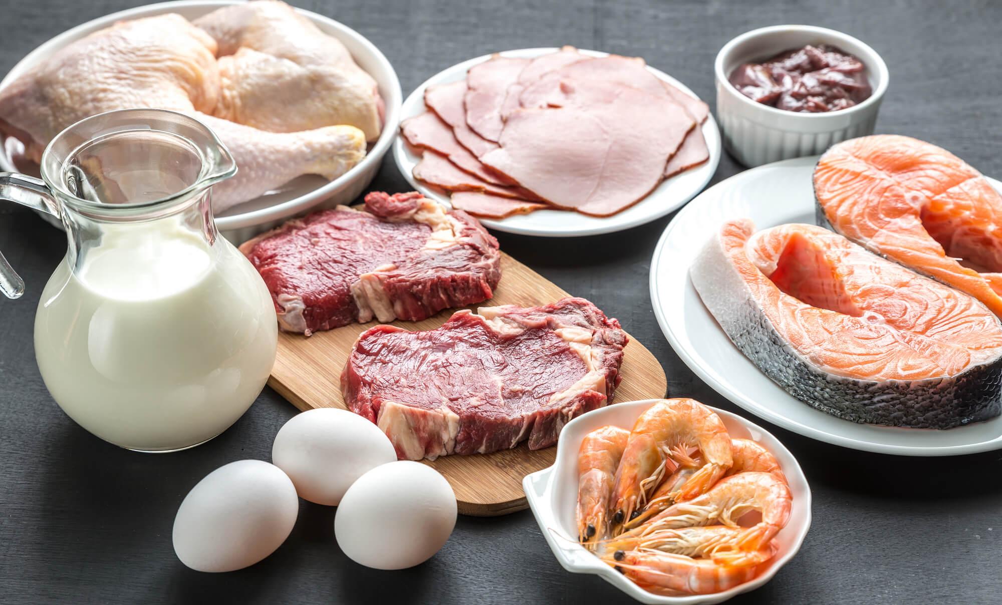 タンパク質の必要量を正しく理解してプロテイン摂取に活かそう!